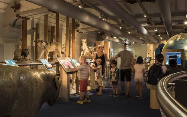Galerie des enfants + Galerie de l'Evolution